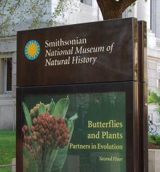 Museum Of Natural History Internships Address