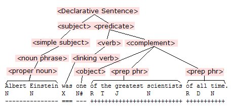 The grammatical basis of the sentence