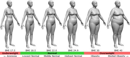 Female Body Mass Index