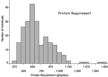 Human Protein Requirements